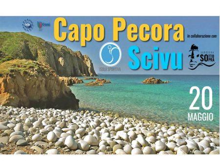 Escursione Capo pecora/Scivu